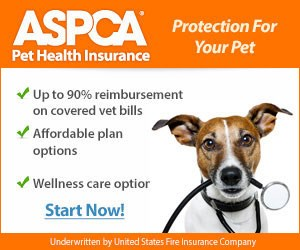 ASPCA-Pet-Insurance-300x250.jpg