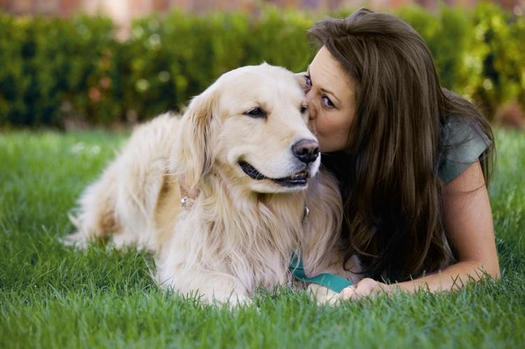 Pet First-Aid Basics.jpg