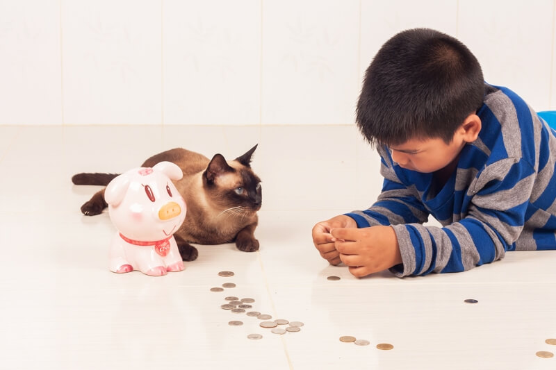 Hidden Costs of Pet Parenting